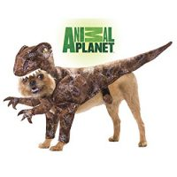 upvoted.top:Animal Planet PET20109 Raptor Dog Costume